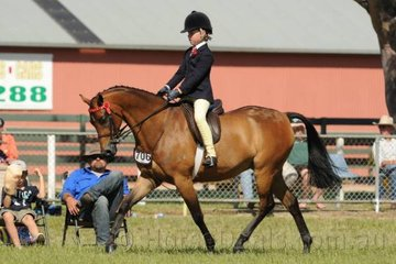Edwina Lumsden has really created a great impression riding her own and Michelle Kelcey's, 'Melody Park King's Command' this show season. Today they took third place in the strong class for  Open Pony 13.2-14hh..