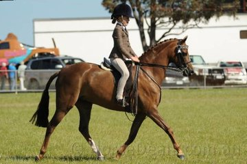 The always impressive Daizi Plumb rode her dad, Dale's, 'Royal Secret' to take out the Reserve Champion Child's Pony award.