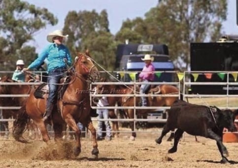 Frenches Rodeo Photos