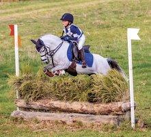 Super Performance Pony