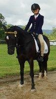 Pony Dressage Superstar