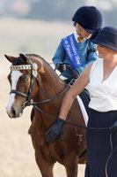 Leading Rein Pony