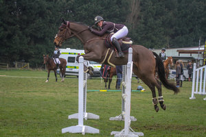 Talented Young Show Jumper