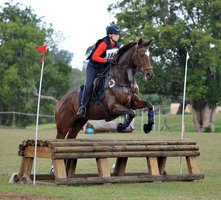Tallented WB Eventer