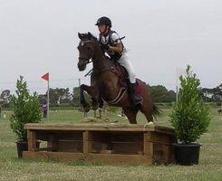 Pony Club Schoolmaster
