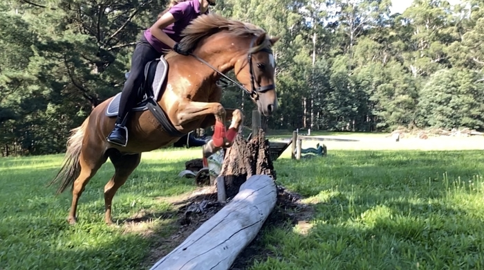 Cross Country schooling with a student