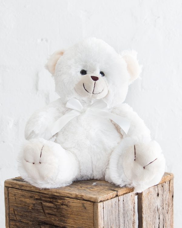 Teddy-Bear-White