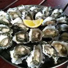 Hamiltons Oysters Bar & Restaurant