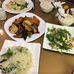 Hong Fu Northern East Chinese Restaurant