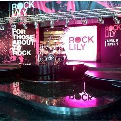 Rock Lily