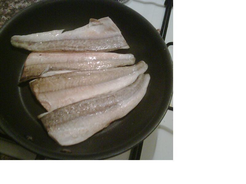 Australia Best Tasting Fish - Fishing Chat - Fishraider
