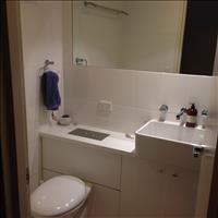 Share house Alexandria, Sydney $290pw, Shared 2 br apartment
