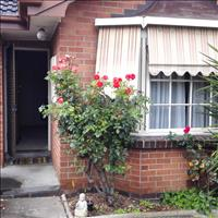 Share house Ashburton, Melbourne $229pw, Shared 2 br semi