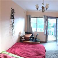 Share house Annandale, Sydney $225pw, Shared 4+ br semi