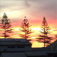 Share house Henley Beach, Adelaide $145pw, Shared 2 br apartment