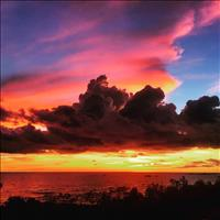Share house Nightcliff, Northern Territory $210pw, Shared 3 br house