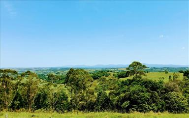 Share house Mcleans Ridges, Hunter, Central and North Coasts NSW $265pw, Shared 2 bedroom house