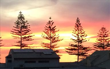 Share house Henley Beach, Adelaide $145pw, Shared 2 bedroom apartment