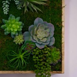 Make Your Own (Faux) Green Wall