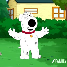Family Guy Brian Feels Accomplished