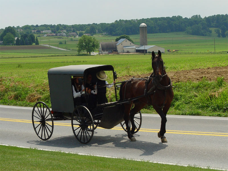 Amish convicted in beard cutting attacks