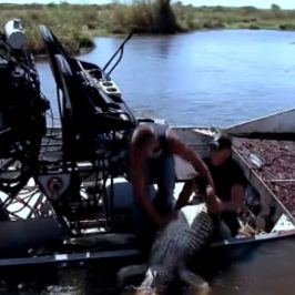 Swamp People – Kings of the Swamp