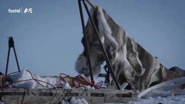 Life Below Zero Season 6 – E12 Sneak Peek