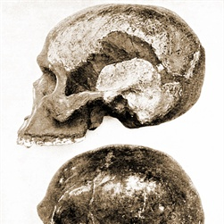 Piltdown Man Exposed as Hoax