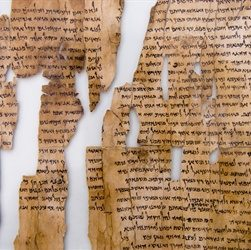 The Dead Sea Scrolls Are First Made Public