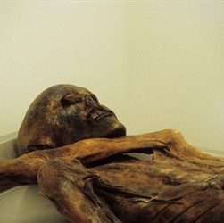 Ötzi the Iceman Is Discovered