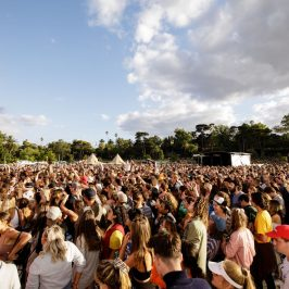 Calls Made For Increased Education Following New Study Into Festival Drug & Alcohol Use