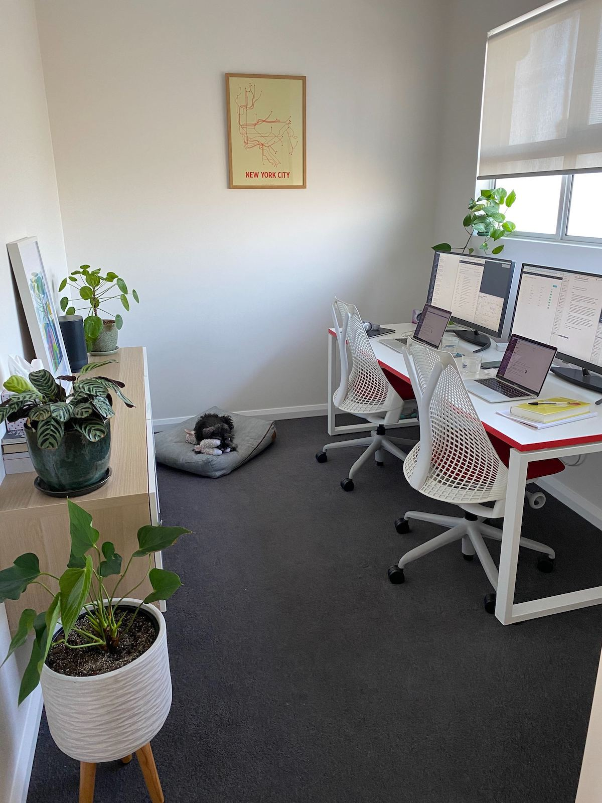 focus booster team home office