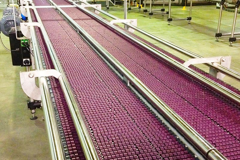 Foodmach Low Back Pressure Multipack Conveyor
