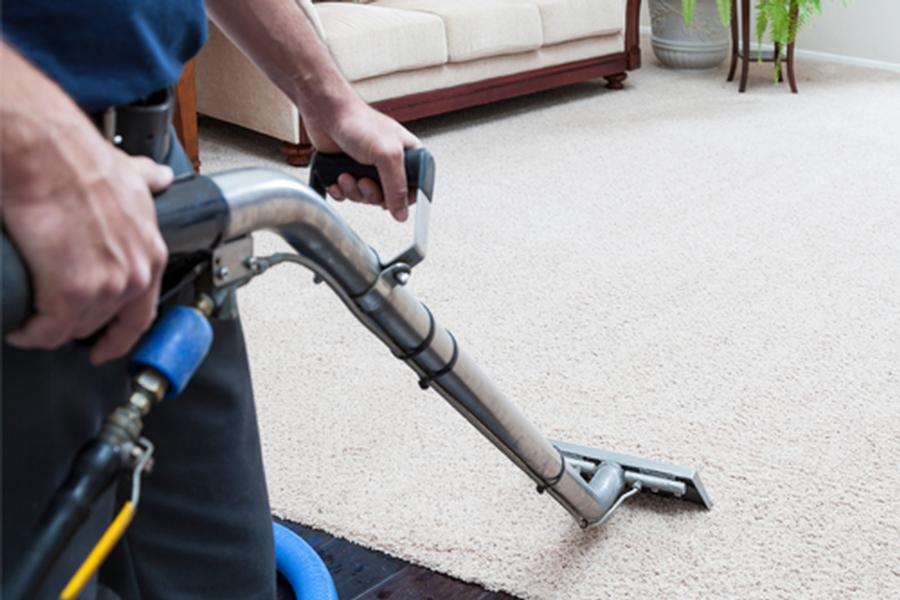 fantastic carpetcleaning