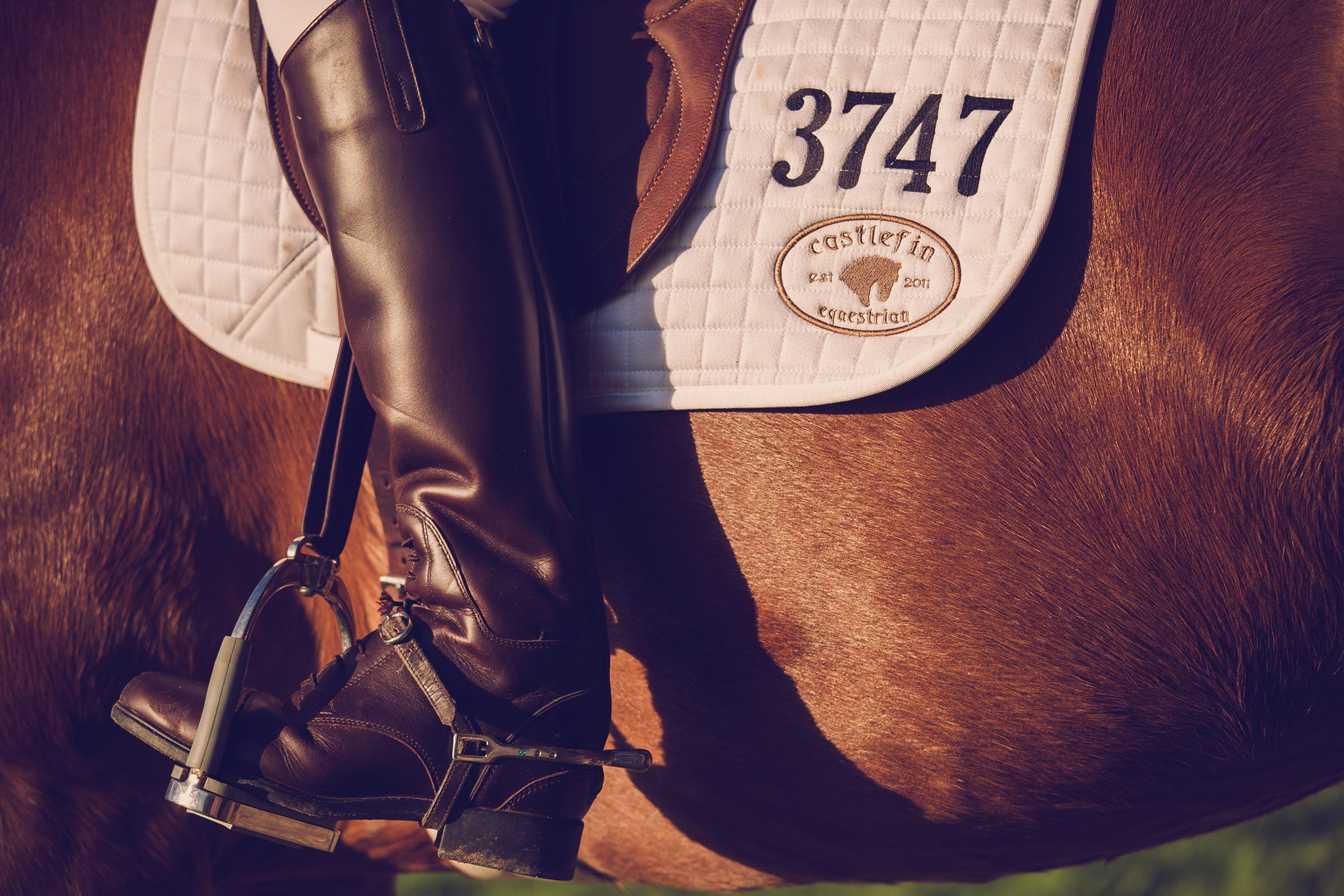 Castlefin Equestrian