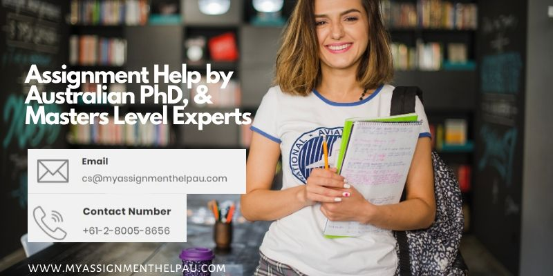 Hire a Reputed Assignment Help to Grab High-quality and Top Grades!