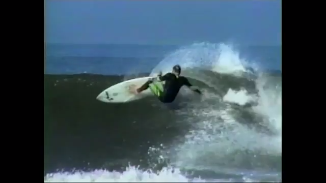 Taylor Knox In Momentum