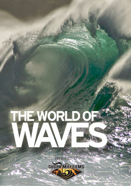 The World of Waves