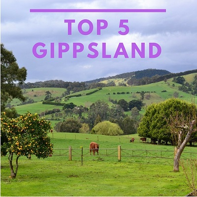 Top Five Best Performing Schools in Gippsland