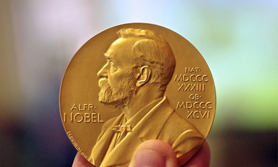 Round up of the 2016 Nobel Prizes
