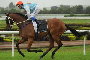 Picture of race horse: Retort Courteous