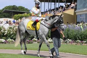 Picture of race horse: Farm Boy