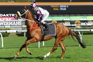 Picture of race horse: Hawkspur