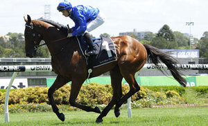 Picture of race horse: Chetwood