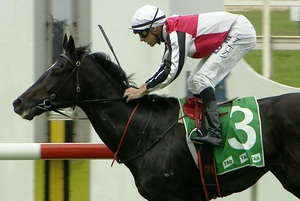 Picture of race horse: Peribsen