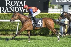 Picture of race horse: Miss Einstein