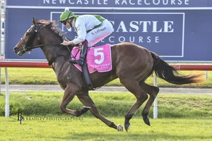 Picture of race horse: Isalute