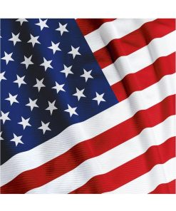 American Valor Lunch Napkins Pack of 36