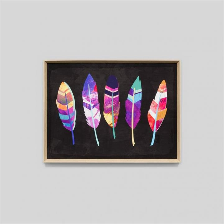 Vibrant Feathers | Black | Framed Print