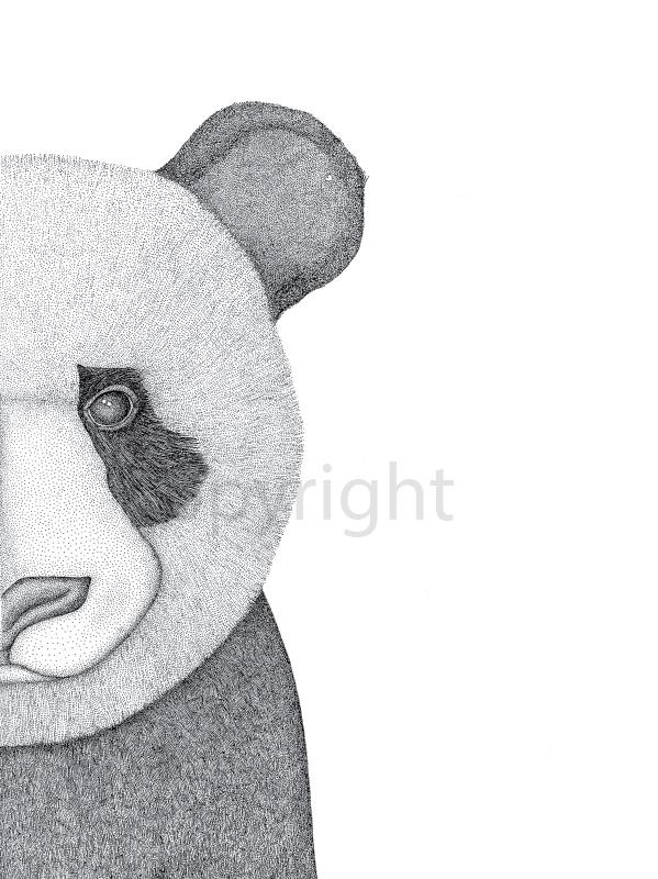 Pete the Panda | Limited Edition Print